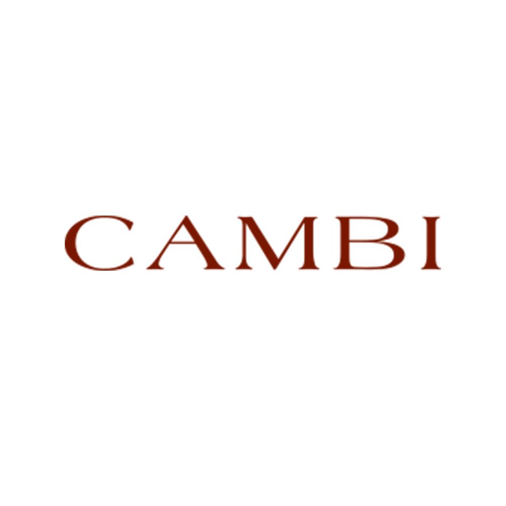 CAMBI Casa d'Aste - MondaniWeb